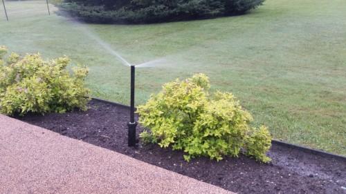 Irrigation-photos-00002