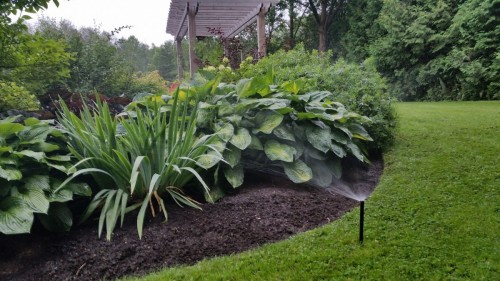 Irrigation-photos-00004