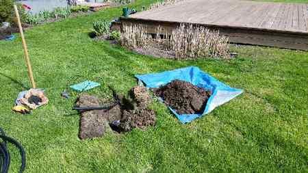 Irrigation-photos-00017