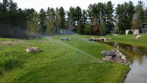 Irrigation-photos-00019