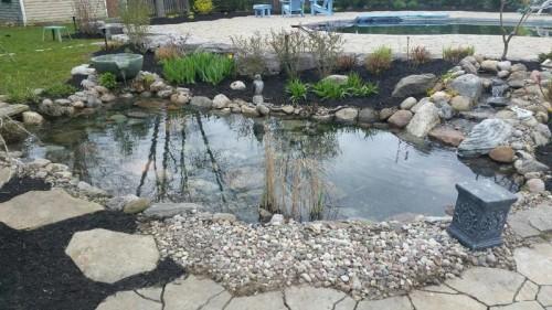 Irrigation-photos-00020