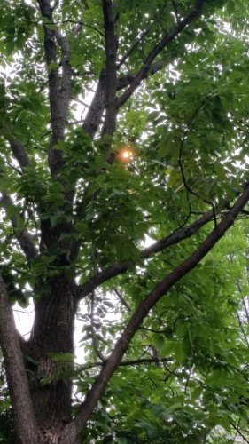 Lighting-photos-00006