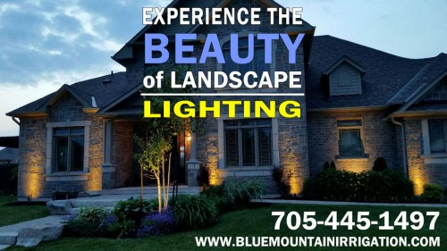LANDSCAPE LIGHTING BANER
