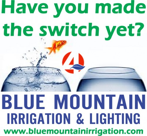 blue-mountain-irrigation-1