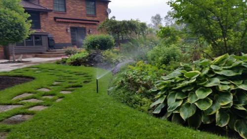 Irrigation-photos-00005