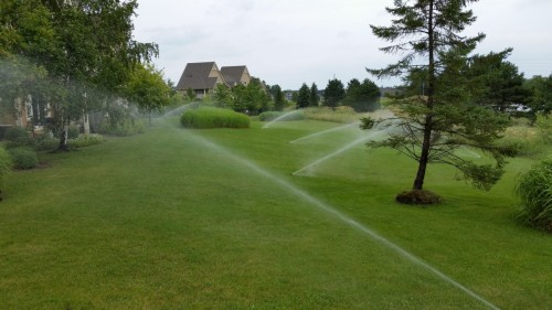 Irrigation-photos-00011