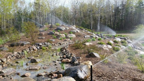 Irrigation-photos-00014