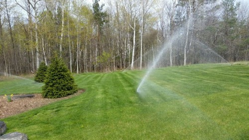 Irrigation-photos-00018