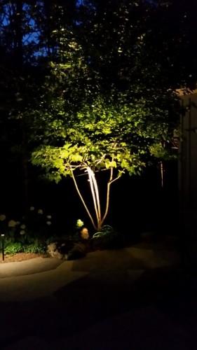 Lighting-photos-00012